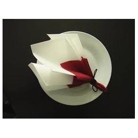 Serviette de table, 2plis, 30 x 30  blanc  pure ouate.colis de 3000